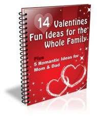 14-valentines-fun-ideas-plr-ebook-cover