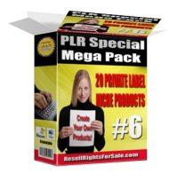 20plrniche private label rights Private Label Rights and PLR Products 20plrniche