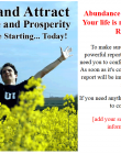 abundance-and-prosperity-plr-listbuilding-confirm