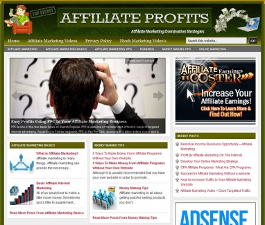 affiliate-marketing-plr-website-cover