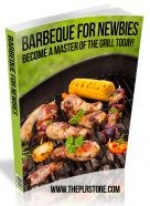 barbeque-for-newbies-plr-ebook-cover