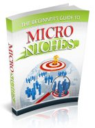 beginners-guide-to-micro-niches-plr-cover