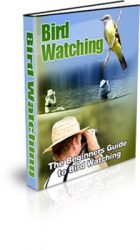 bird-watching-mrr-ebook-cover  Bird Watching MRR eBook bird watching mrr ebook cover 140x250