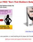 burn-that-stubbon-body-fat-plr-listbuilding-download