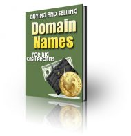 buying-and-selling-domain-names-plr-ebook-cover