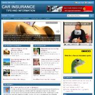 car-insurance-plr-website-cover