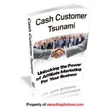 cash-customer-tsunami-plr-ebook-cover