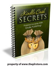 kindle cash secrets plr report