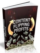 content flipping plr ebook