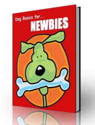dog basics plr ebook