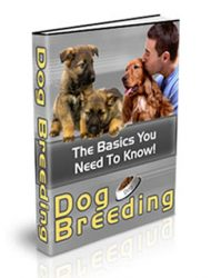 dog breeding plr ebook