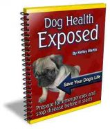 dog-health-exposed-plr-ebook-cover