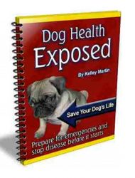 dog health plr ebook