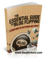 essential-guide-to-blog-flipping-mrr-ebook-cover