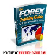 forex-training-guide-mrr-ebook-cover
