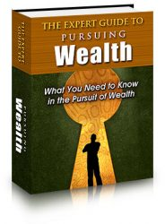guide-to-pursuing-wealth-plr-ebook-cover