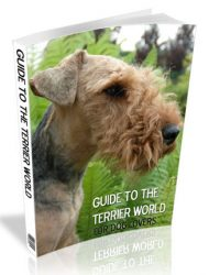 guide to terrier dogs plr ebook guide to terrier dogs plr ebook Guide to Terrier Dogs PLR Ebook guide to terrier dogs plr ebook 190x250