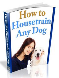 how to housetrain any dog plr ebook how to housetrain any dog plr ebook How To HouseTrain Any Dog PLR Ebook how to housetrain any dog plr ebook 190x250