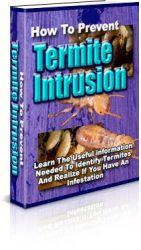how-to-prevent-termite-intrusion-plr-ebook-cover-1