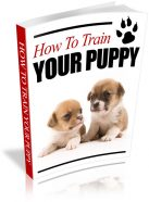 how-to-train-your-puppy-plr-ebook-cover
