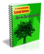 how-to-use-words-to-sell-plr-ebook-cover