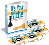 its-your-niche-plr-ebook-audio-cover
