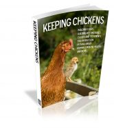 keeping-chickens-plr-ebook-cover