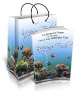 keeping-fish-plr-ebook-cover-1
