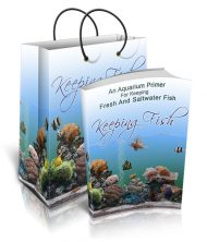 keeping-fish-plr-ebook-cover-1