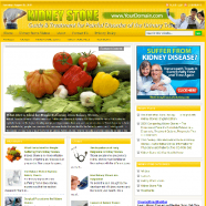 kidney-stones-plr-website-cover