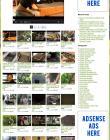 lawn-garden-plr-amazon-store-website-videos