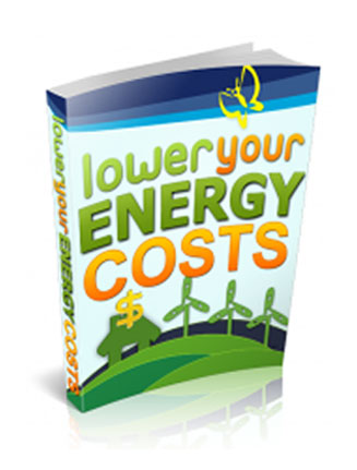 lower-energy-costs-plr-ebook