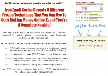 make-money-online-plr-squeeze-page-template