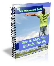 make-your-attitude-your-ally-plr-ebook-cover