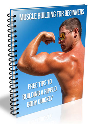 muscle building for beginners plr muscle building for beginners plr Muscle Building for Beginners PLR Listbuilding Package muscle building for beginners plr