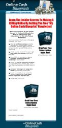 private label rights Private Label Rights and PLR Products my online cash blueprint plr squeeze page