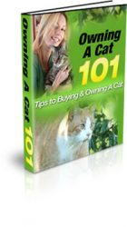 owning-a-cat-mrr-ebook-cover