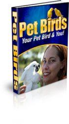 pet-birds-mrr-ebook-cover  Pet Birds Master Resale Rights Ebook pet birds mrr ebook cover 140x250
