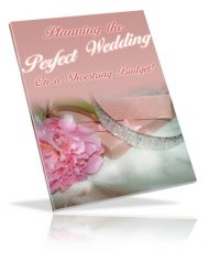 planning-the-perfect-wedding-plr-ebook-cover