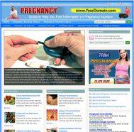 pregnancy-nutrition-plr-website-cover