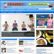 pregnancy-plr-website-cover