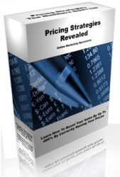 pricing-strategies-plr-ebook-cover  Pricing Strategies PLR Ebook pricing strategies plr ebook cover 169x250