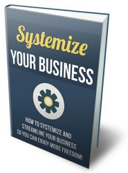 systemize-your-business-mrr-ebook-cover  Systemize Your Business MRR Ebook systemize your business mrr ebook cover 185x250