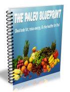 paleo diet blueprint plr ebook
