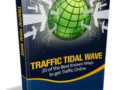 traffic-tidal-wave-plr-ebook-cover