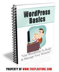 wordpress-basics-plr-autoresponders-cover