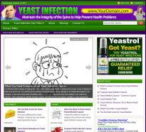 yeast-infection-plr-website-2-cover
