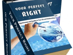 your-perfect-right-plr-ebook-cover