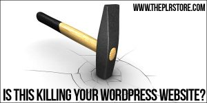 Is This Killing Your Wordpress Site? is this killing your wordpress site 2 300x150