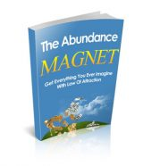 abundance-magnet-mrr-ebook-cover